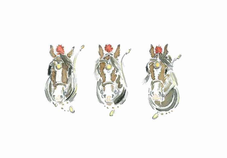 Shire Horse Trio -