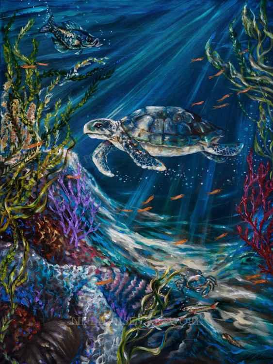 Coral Reef Turtle