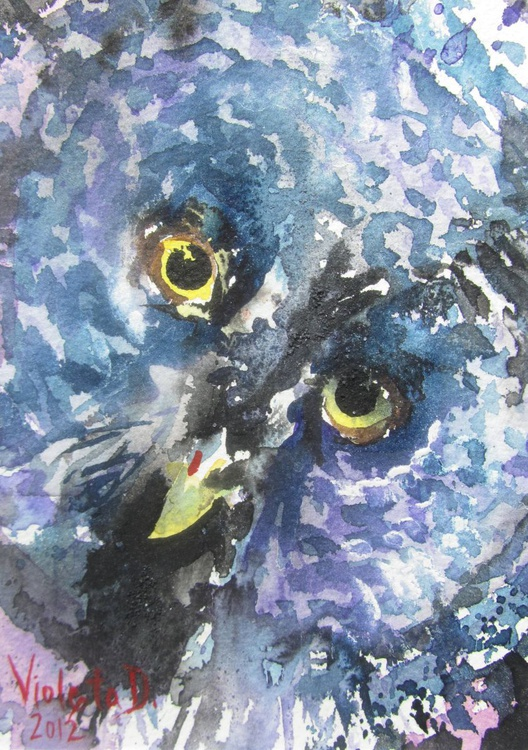 The Blue Owl - Image 0