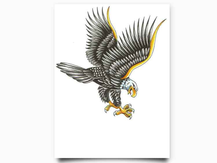 American Eagle-Hand drawn colored digital print