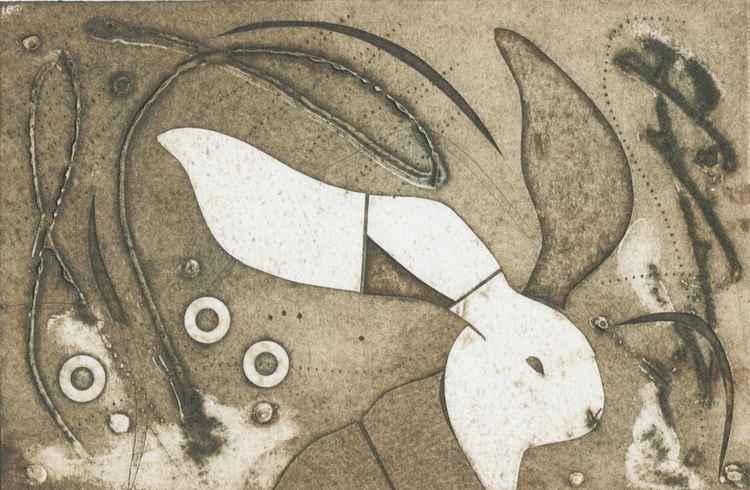 Wild Hare -