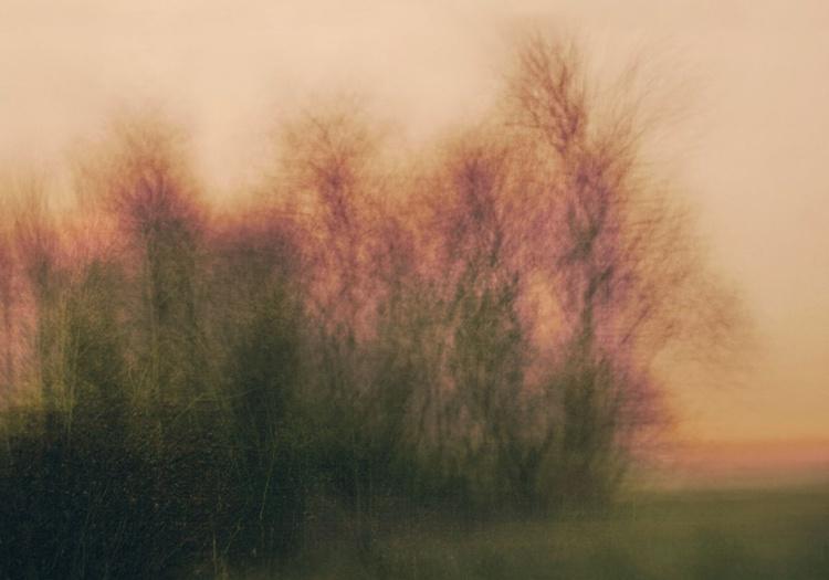 Misty dawn II - Image 0