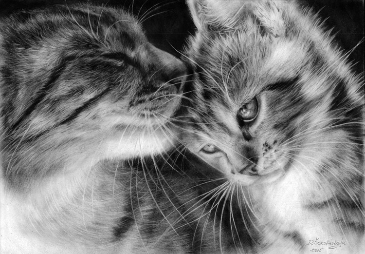 Mom Cat And Her Kitten - Image 0