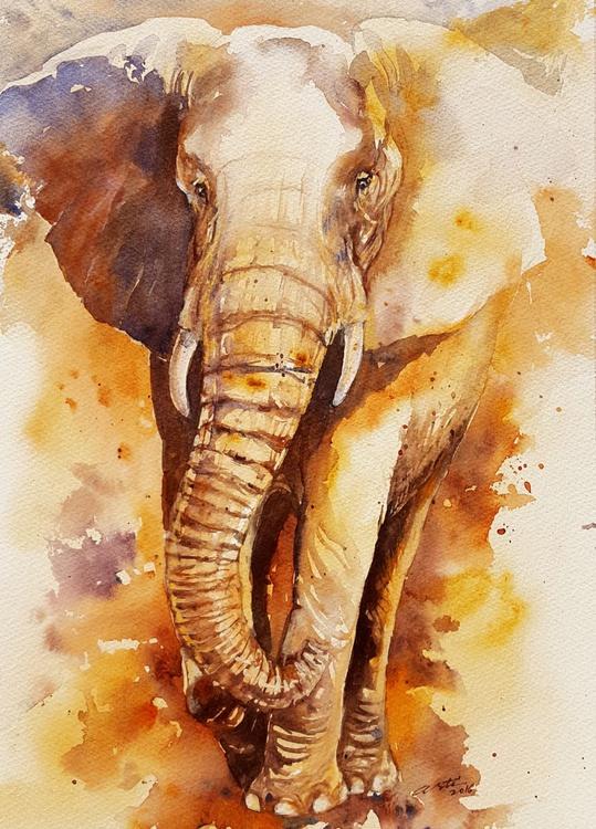Bronze Bill_ Elephant - Image 0