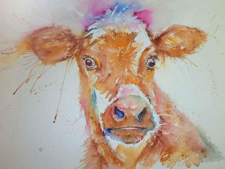 Crazy Calf! -