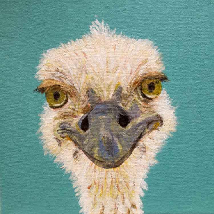 Ostrich -
