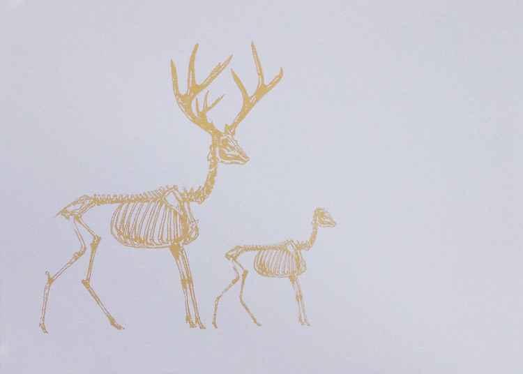 Deer Kin