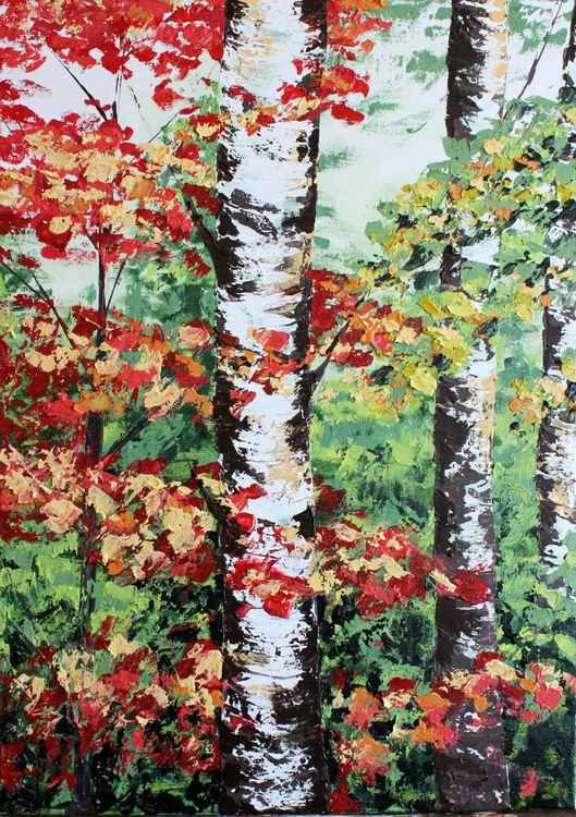 Colorful birches