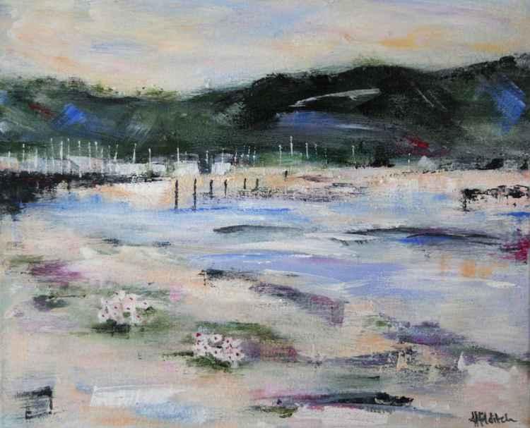 Deganwy Beach Flowers -