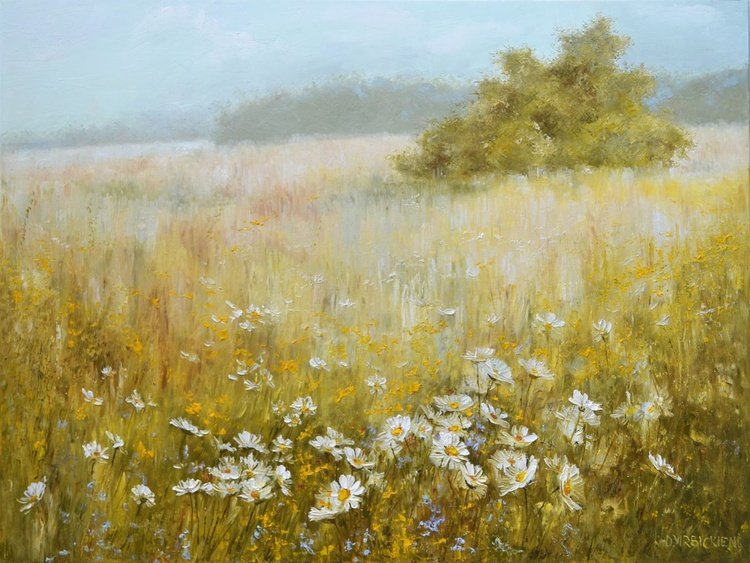 FOG OVER THE MEADOW - Image 0