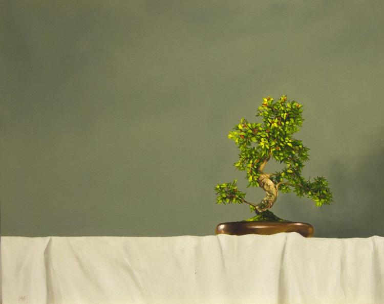 Feng Shui - Image 0