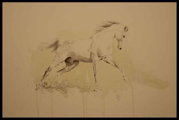 The movement of a Horse Study 4.1 -