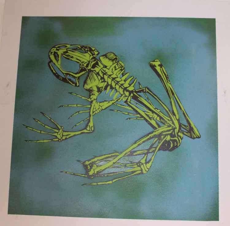 Frog Skeleton 2