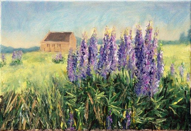 Purplish lupine in the front of the Good Shepherd Church , NZ, Acrylic  - Image 0