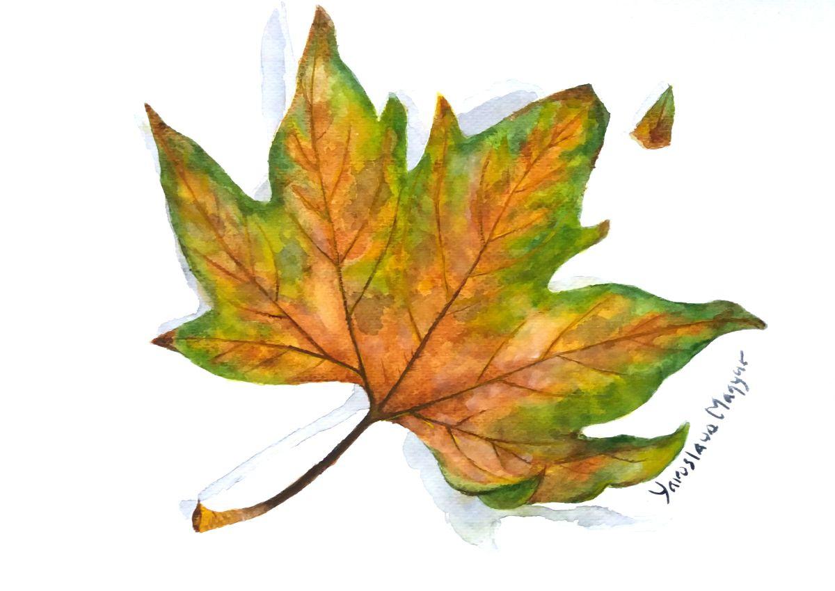 last leaf Last-leaf-outdoors.