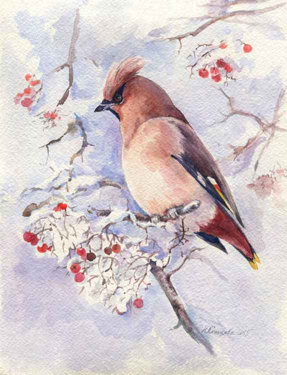 "Original watercolor ""Waxwings"" -"