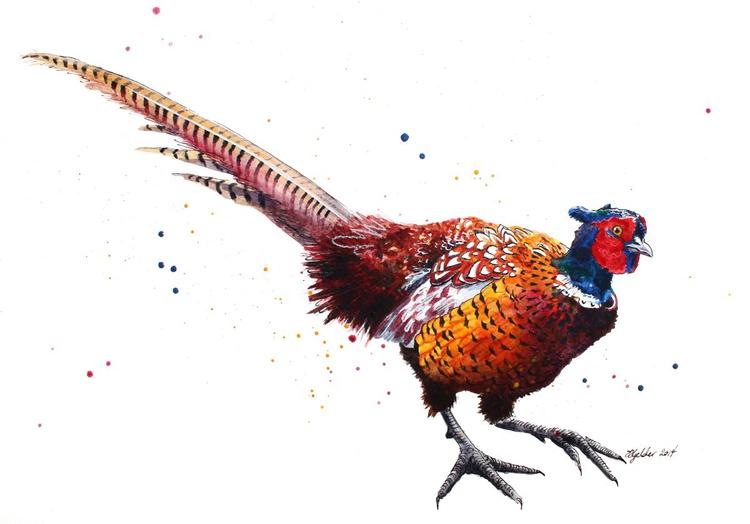 """Quill"" Original Pheasant Watercolour - Image 0"