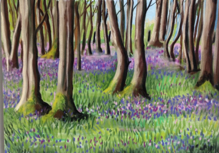 Bluebell woods No 2 - Image 0