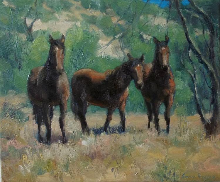 Wild horses - Image 0