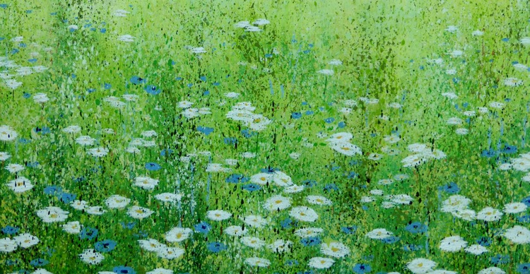 Large daisy meadow with cornflowers - Image 0