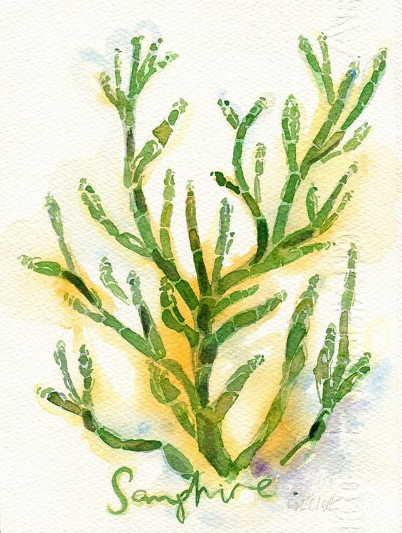Original Watercolour Painting of Samphire - Image 0
