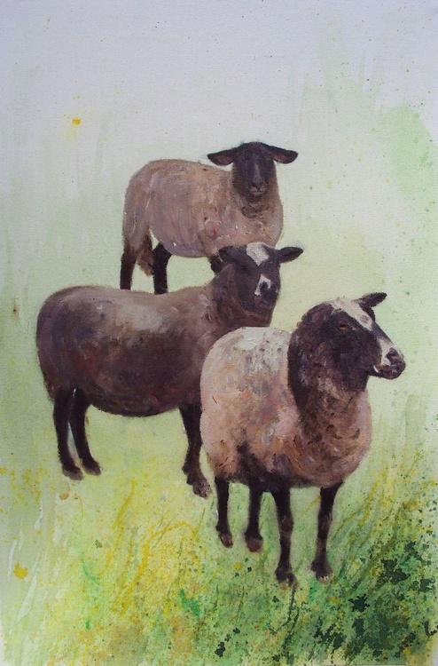 Three Blackface Sheep - Image 0