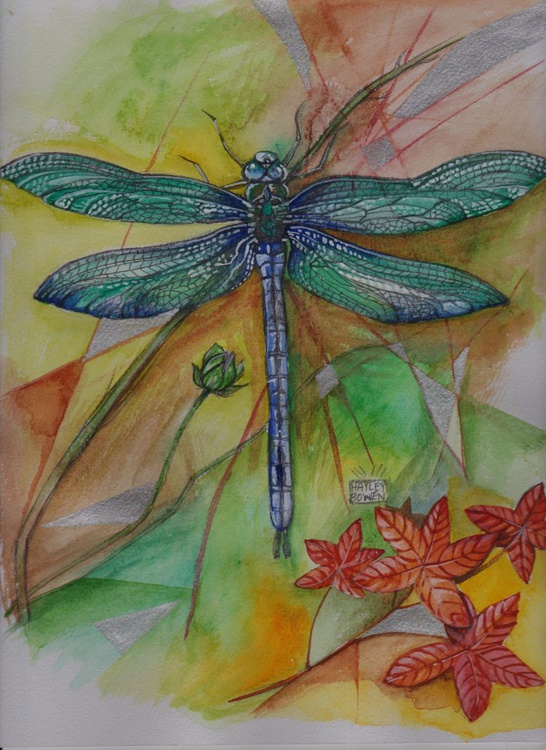 Dragonfly Summer - Image 0
