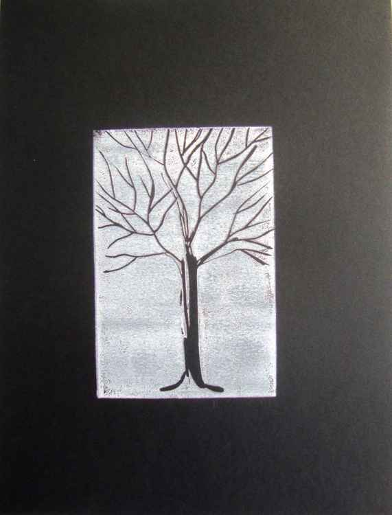 black on white on black tree -