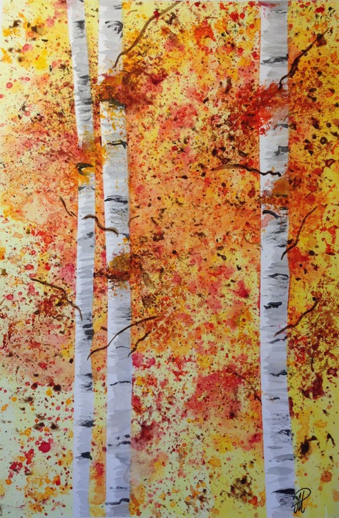 Aspen trees in Forrest - Image 0