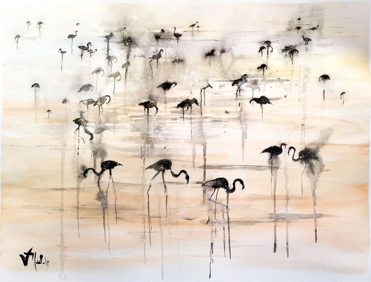 Greater Flamingo - Image 0