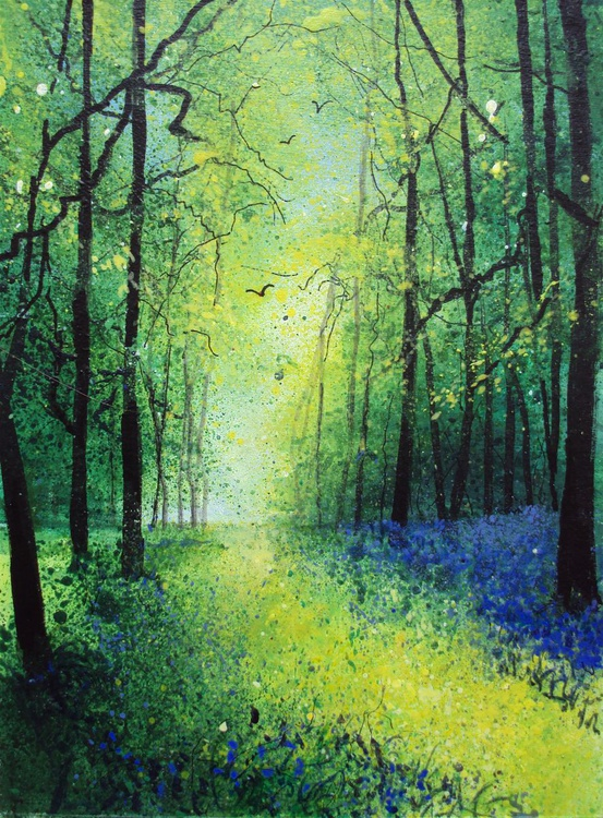 Sapphire Bluebell Woods - Image 0