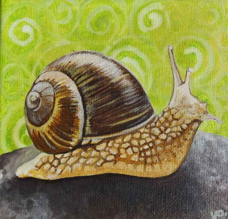 Snail swirl. -