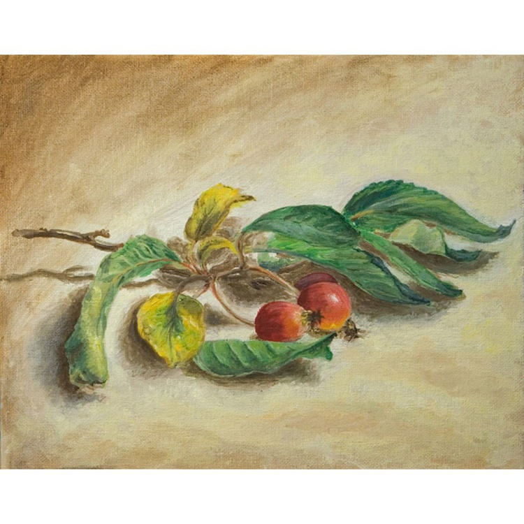 Cherry branch - Image 0