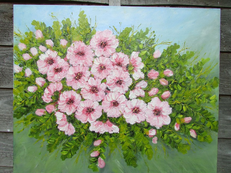 Pink blossoms - Image 0