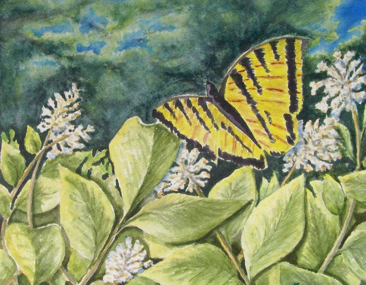 Yellow Butterfly - Image 0