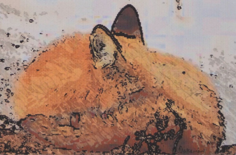 Fox Snuggling - Image 0