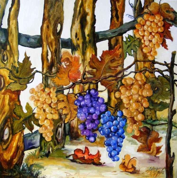 Dealul viilor, landscape by E.Bissinger -