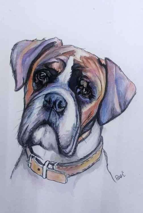 Boxer: Dog Doodle Portrait