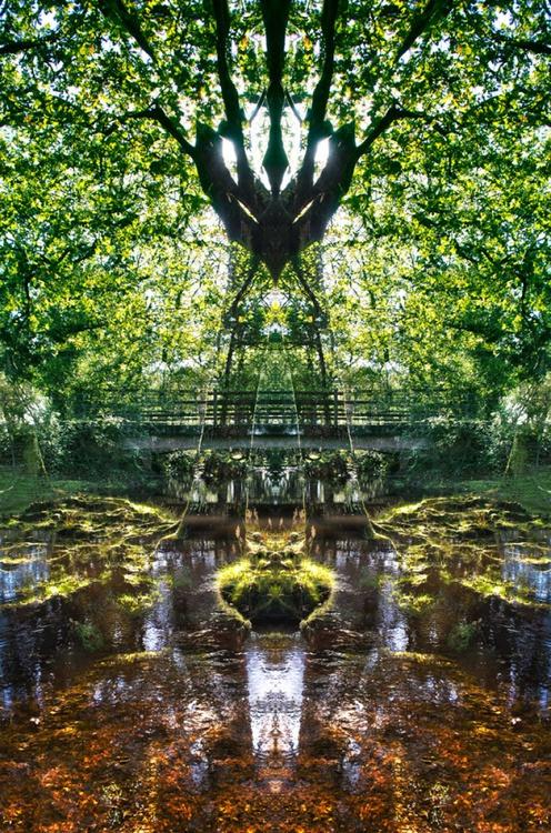 "Devil on Legs - Symmetry Series - 20"" x 30"" Giclée Photorag 308 - Image 0"