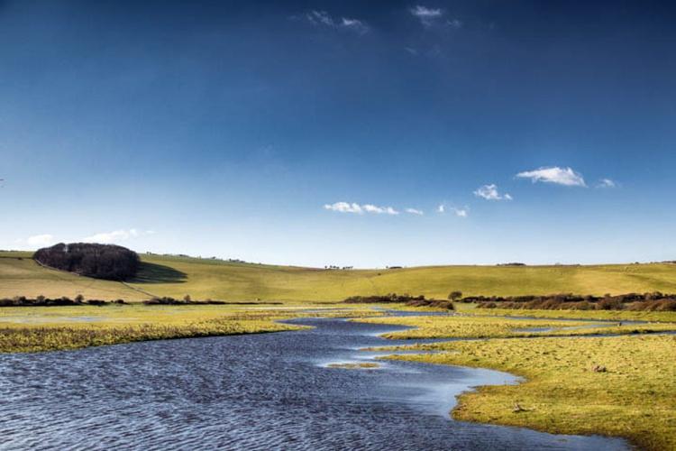 The Plains - Image 0