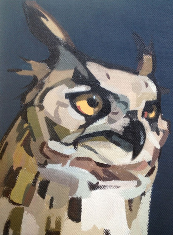 Night Owl - Image 0
