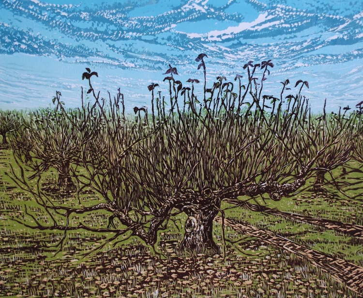"""""""Orchard in Winter"""" - Image 0"""