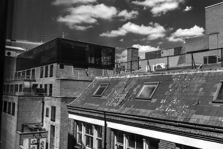 Walking on the Roofs - Image 0