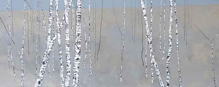 Birch Tree KMM -