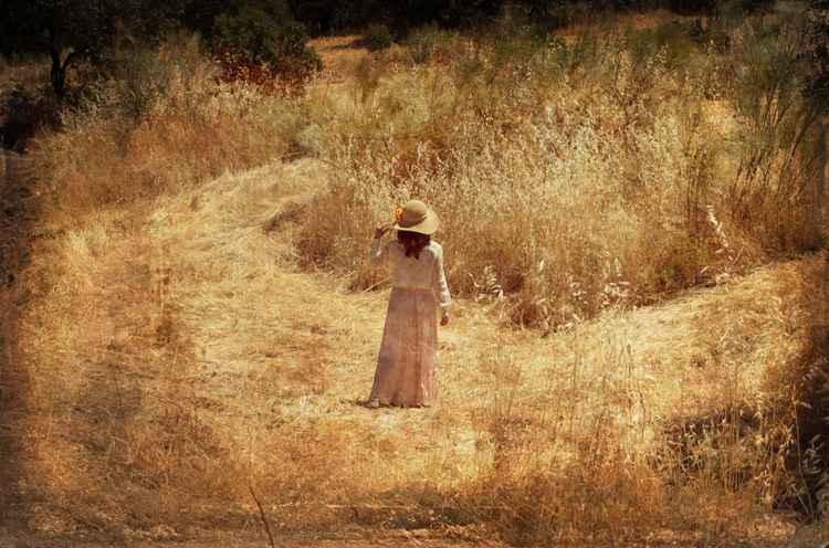 Memories of a faraway summer -
