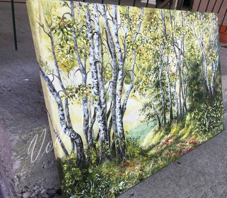 Birch foresr - Image 0