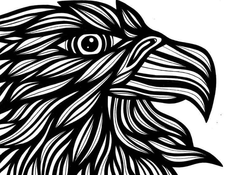 Eagle Hawk Effulgent Original Drawing -