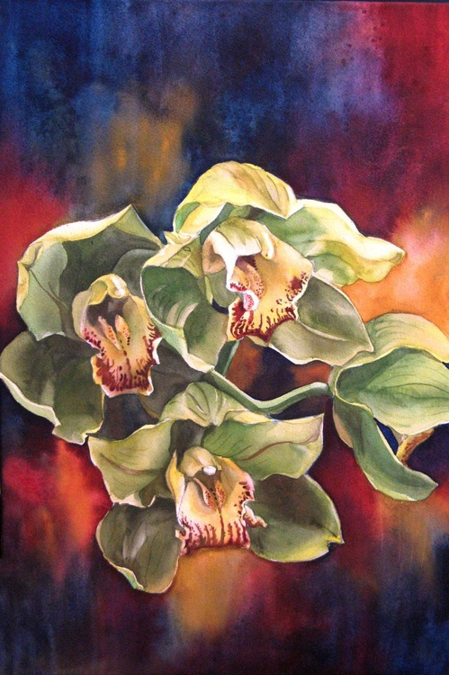 green cymbidium orchid with red - Image 0