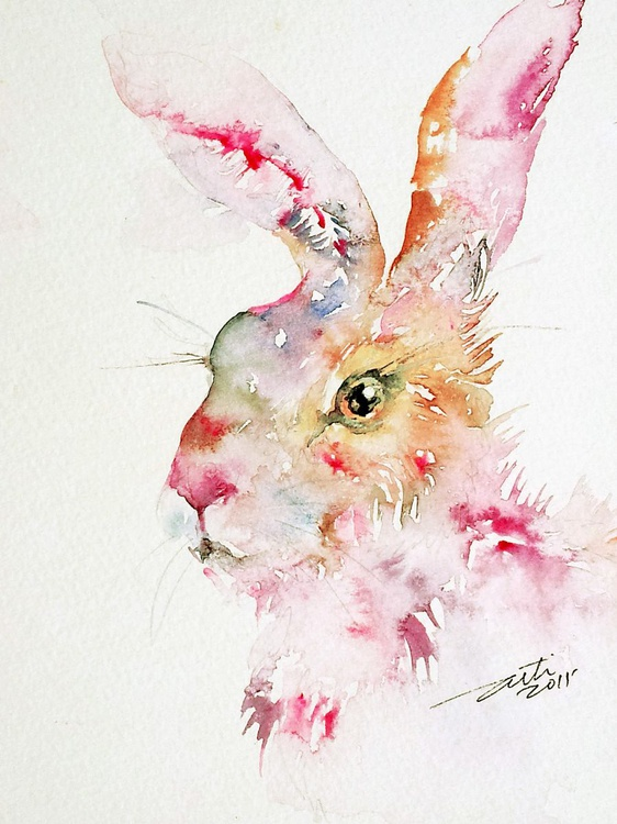 Strawberry Hare - Image 0