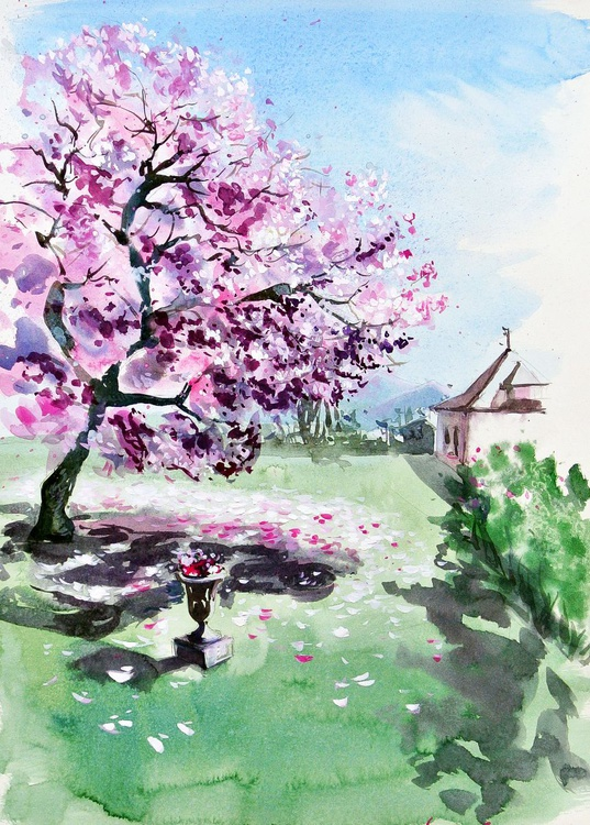 Magnolia from Renens - Image 0